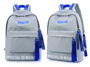 Nouveau design populaire gris sac à dos d'étudiant grand espace