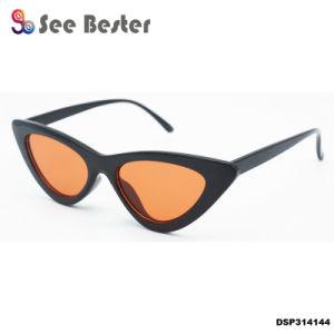 Sports de plein air promotionnel OEM Lady Cat Eye Lunettes de soleil en plastique d'usure