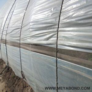De HDPE branco Agricultura anti inseto Net ( 50-240 g/m2 )