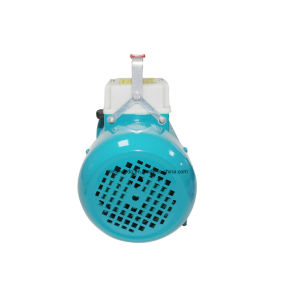 Wedo eléctrico doméstico bomba de agua centrífuga (1.5DK-20)
