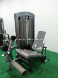 Macchina della pressa del Triceps della strumentazione di ginnastica (Xh910)