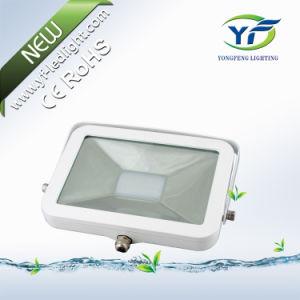 50W Projector LED com RoHS MARCAÇÃO AEA UL