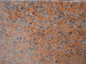 Mattonelle di pavimento interne rosse del granito dell acero poco