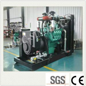 Power Plant Groupe électrogène de biogaz à la norme ISO Ce approuver (170kw)