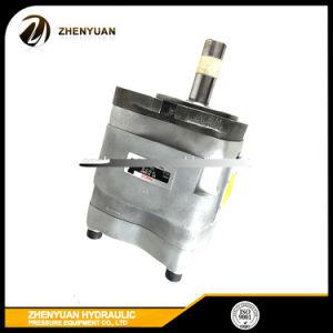 Spritzen-Maschinen-Hydraulikpumpe-Zahnradpumpe Iph-4b/5b/6b-20/25/32/40/50/64/80/100/125-11/20