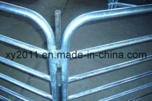 中国のしなやかな馬のパネル(XY-413)