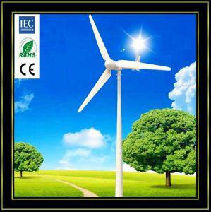 Ветер генератор 1 квт, домашнего использования ветровой турбины с 3 Лет бесплатно плановое обслуживание