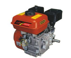 De Motor van de benzine (PS168F)