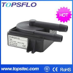 Pompa di circolazione di raffreddamento senza spazzola della pompa/CC di CC