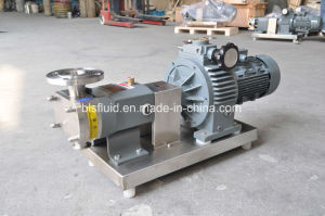 Pompe del lobo del rotore dell'acciaio inossidabile con il collegamento della flangia