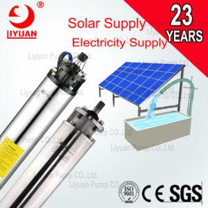 Aço inoxidável marca Liyuan Submersíveis Solar de Poços do Motor da Bomba de 6 polegadas
