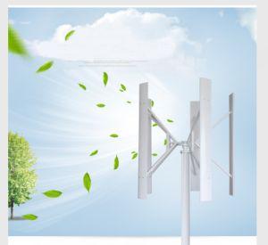 100W AC de Verticale Turbine van de Wind van de As China