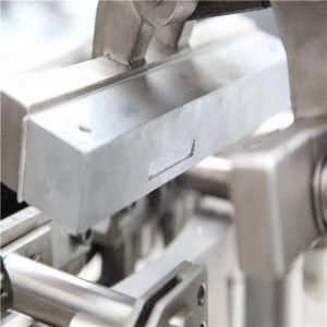Bolsa de polvo de Rotary harina azúcar Doypack empaque de especias de llenado de la máquina de embalaje