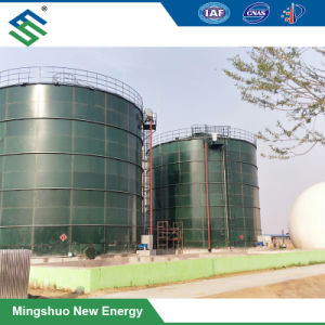 유기 패기물 처리를 위한 혐기성 Biogas 발효작용 소화자