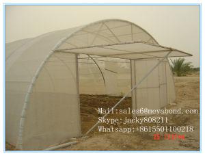 美しい緑色の反昆虫の網/反老化の昆虫の網または水耐久性がある昆虫の塀