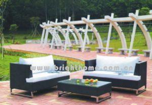 Плетеной мебели в саду (BL-019)
