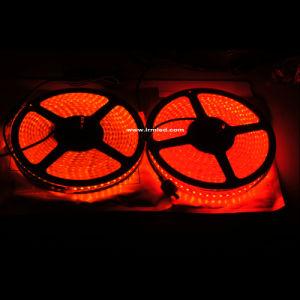 変更LED適用範囲が広いライトIP67屋外のWateproof LEDストリップランプを着色しなさい