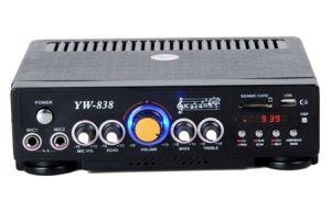 Altoparlante dell'amplificatore dell'automobile (YW-838)
