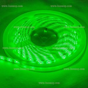 Della fabbrica indicatore luminoso di striscia di Suppy SMD3528 LED direttamente con l'UL elencata