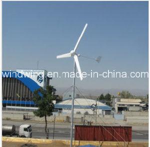 住宅600W (100W-20kw)のための独立した風カエネルギーの発電機