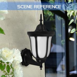 Tagesdekoration-Nachtlicht-Sonnemmeßfühler-Licht des Hersteller-LED