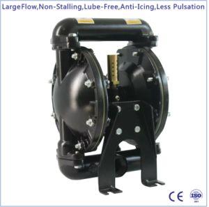 1  doppia pompa a diaframma pneumatica metallica