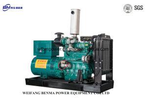 Dieselgenerator des elektrisches Anfangs24v mit Yc Motor-Marathon-Drehstromgenerator