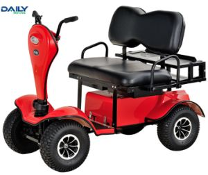 Ce asiento doble Mini carro de golf eléctrico con motor de 1500W 24V DM800