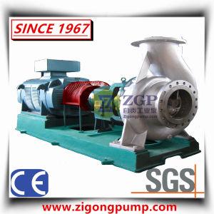 Pompa centrifuga di aspirazione chimica orizzontale di conclusione con l'ex motore