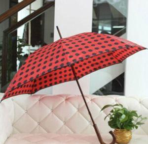 方法および環境に優しいPoeの子供の傘