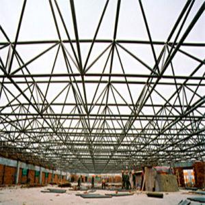 전문가는 강철 구조물 건물을 디자인했다