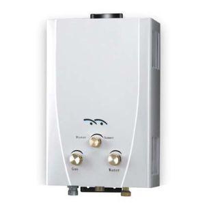 Conduta de estilo exterior - aquecedor de água a gás de combustão (JSD-F33)