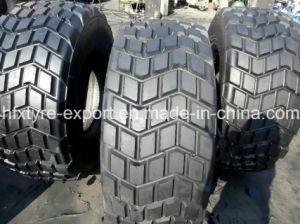 Gummireifen für Wüste Truck, 445/65r22.5 (18R22.5) Radial Tires mit Best Quality und Prices, Aeolus Brand