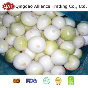 Haut de la qualité de l'oignon jaune fraîches pelées