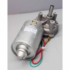 24V 33rpm 6nm (MB062FF100-WD0069-01)のDCのワームギヤモーター