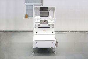 Kichtenの塩カラー選別機のホーム使用の塩