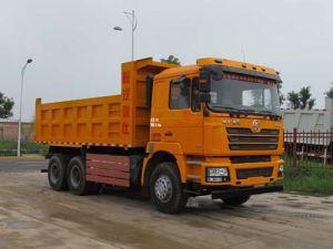 De Vrachtwagen van de Stortplaats van de Wielen van Shacman 6X4 10 25t 30t voor Afrika