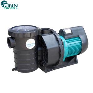 プール水鉱泉の電気ポンプ