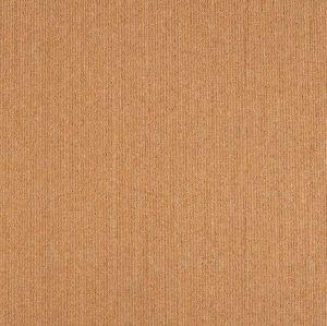 熱い販売はPVC裏付けのタイルのカーペットが付いているカラーループ山のオフィスのナイロンを嘆く