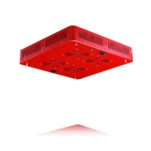 2000W Venta caliente todo el espectro de alta potencia LED Luz crecer