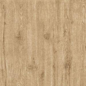 Goede Verkopende Rustieke Tegel 600X600mm van de Vloer van het Porselein
