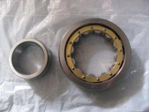 Roulements à rouleaux cylindriques (NU309)