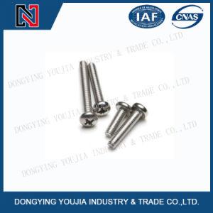 Jisb1111b Croix en acier inoxydable encastrés de vis à tête bombée
