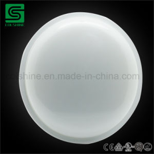 20W Luminaria LED Oval IP65 para el exterior de la luz de pared Dispositivo de luz