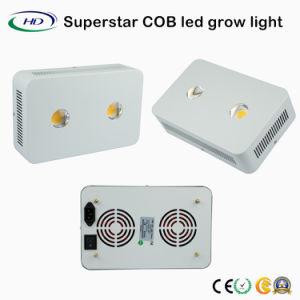 COB Crecer con luz LED Modular Cree fichas para verduras