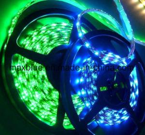 300LEDs/60LED/M IP66 impermeabilizzano l'indicatore luminoso di striscia flessibile di SMD5050 LED