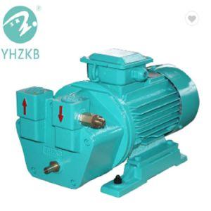 Máquina de Esterilização Yulong Yhzkb Shanghai / Bomba de vácuo para a autoclave