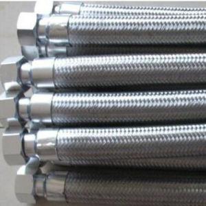 L'OEM ss ha intrecciato il fornitore d'acciaio flessibile del tubo flessibile