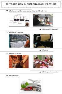 Sujetador de encaje floral y Panty de moda para Damas (EPB153)