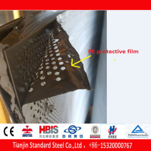 ステンレス鋼の版穴があいたSs 304の316L開口